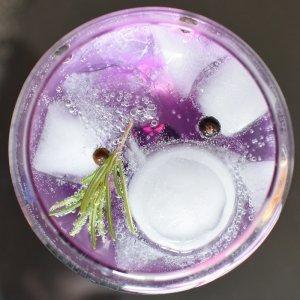 Verre de gin tonic