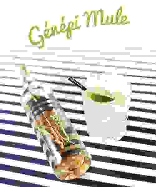 Cocktail Génépi Mule Cambusier